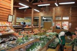 新鮮な地物野菜がいっぱい!